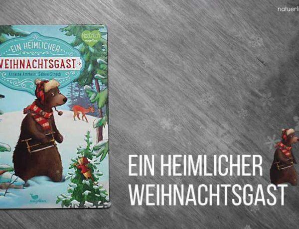 Ein heimlicher Weihnachtsgast Buchtipp Weihnachtsbuch für Kinder