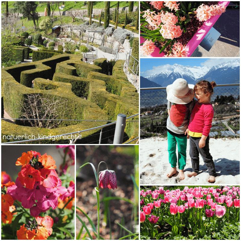 Schloss-Trauttmansdorff-Gärten-Blumen-und-Sandstrand