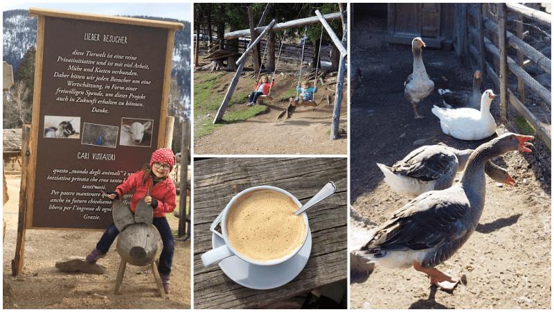 Tierwelt-Rainguthof-Gfrill-für-Kinder
