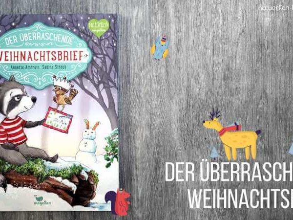 Buchtipp Weihnachtsbuch für Kinder Der überraschende Weihnachtsbrief