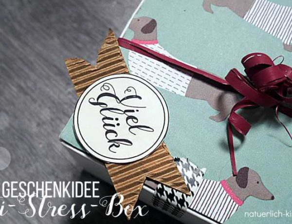 Anti-Stress-Box Geschenkidee Anti-Stress-Paket-2