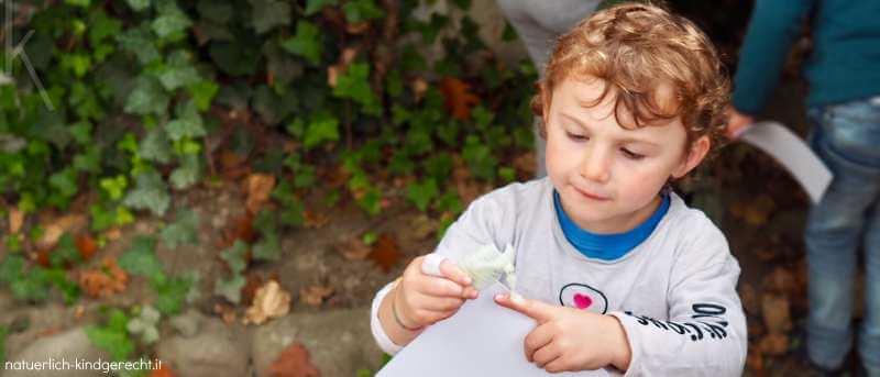 Schatzsuche mit dem Motto Dinosaurier auf dem Kindergeburtstag