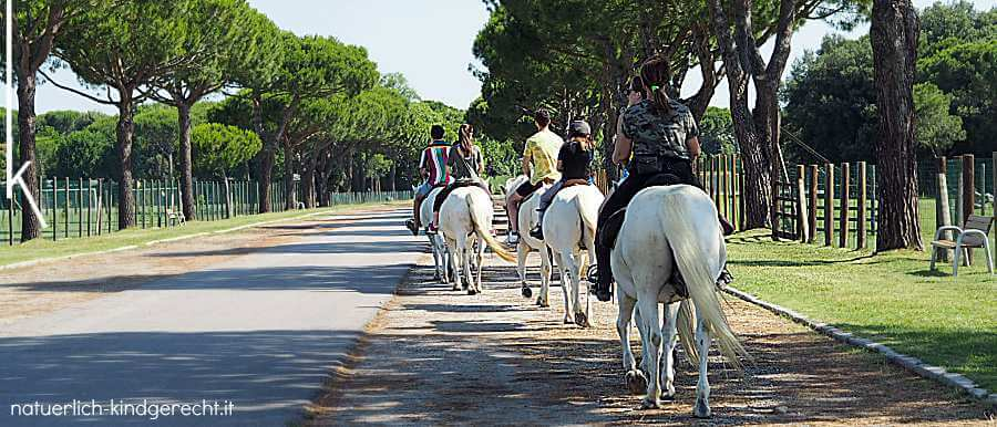 Delta-Camargue Ausritt in Italien Reitferien