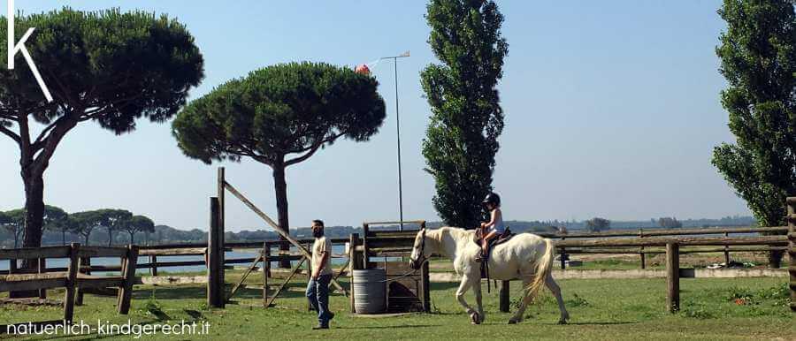 Spiaggia Romea Pferdezucht Reiturlaub in Italien Delta-Camargue weiße Pferde+