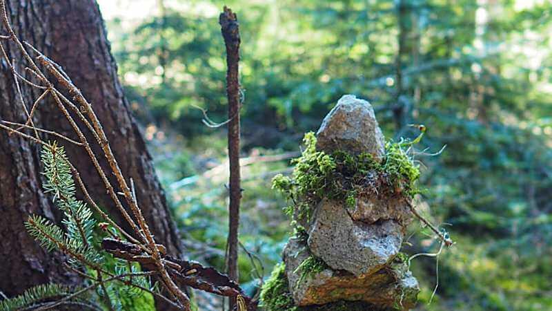 Steinfiguren-im-Wald-am-Sternenweg-Gummer