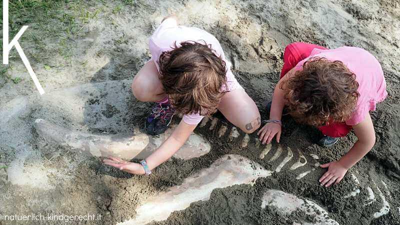 Dinosaurier ausgraben Meran Südtirol