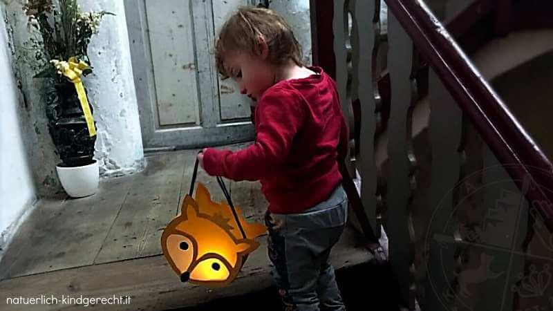 Zweijähriges Mädchen mit ihrer Fuchs-Laterne beim Martinsumzug