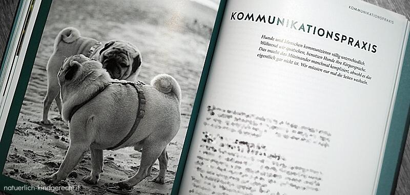 Kommunikation mit dem Hund Jochen Bendel
