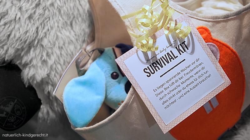 Geschenkidee für Schwangere und werdende Mütter Survival-Box