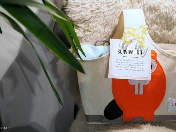 Survival Kit für frischgebackene Eltern Überlebensbox zur Geburt