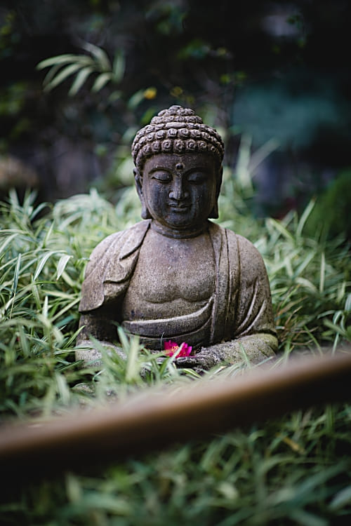 Buddha-Bowl-Kochrezept-Glück-essen