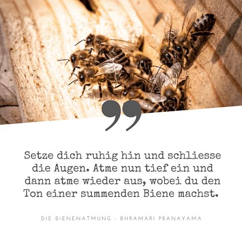 Bienenatmung
