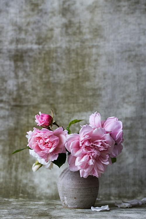 Blumen machen uns glücklich Achtsamer Adventskalender Blumenduft